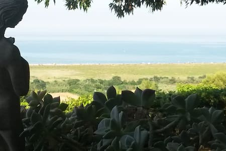 vigna sul mare - porto san giorgio - Talo
