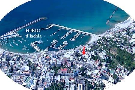 Chambre dans le centre de Forio 100 mètres du port - Forio