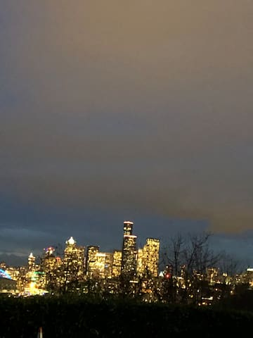 Seattle skyline from the property.