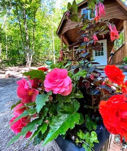 Canna Cabin private glamping at Honeypot Farm