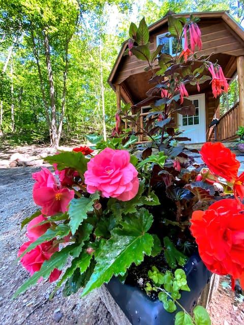 Canna Cabin private glamping at Honeypot Farm