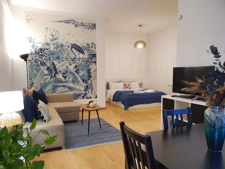 Blu Flamingo in Trastevere, Stylish Apartment
