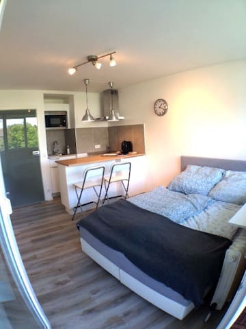 Nice,cozy apartment 10 min to central station
