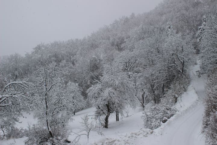 La route qui mène au gite en hiver. Equipements spéciaux obligatoires, sinon vous ne montez pas.