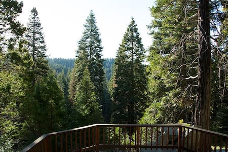 For Nature Lovers: Rustic Cabin in Giant Sequoias