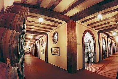 Ciudad internacional del vino - Almendralejo - Şehir evi