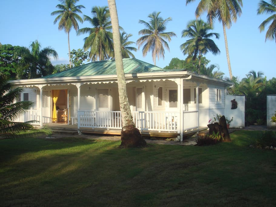 CASA TROPICAL, WiFi, No A/C needed. No car needed. No street noise. Great location!