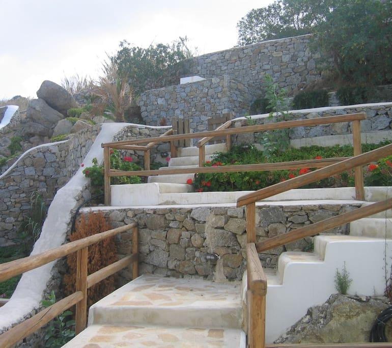 Steps leading to front door