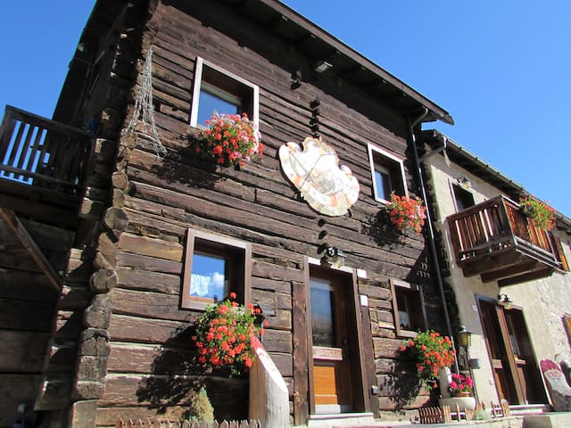 Apartment in a typical chalet - Livigno - Apartment