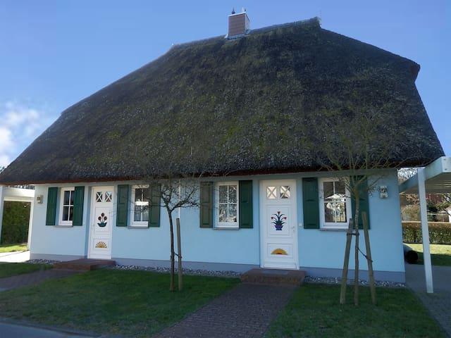 Reetgedeckte Doppel-Haushaelfte  - Born auf dem Darß - House