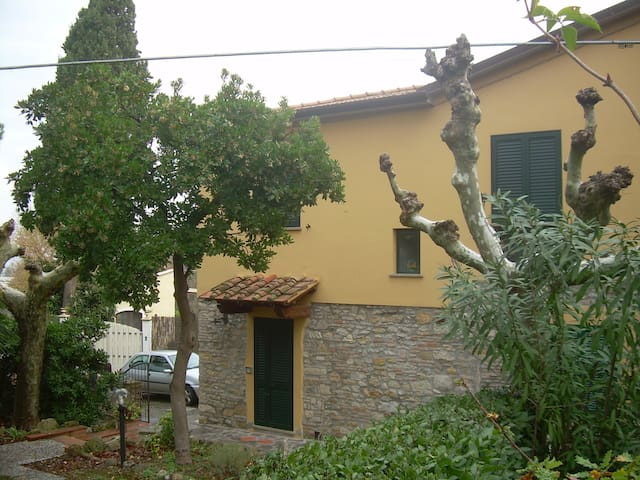 Ideal 6 beds / private garden - Rosignano marittimo - Apartment