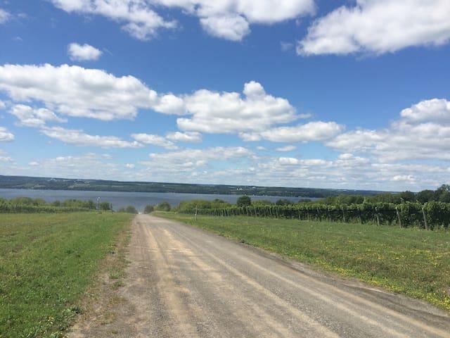 Beautiful country roads to bike and run