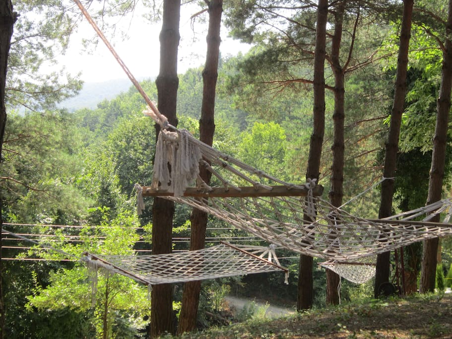 Just lay down hammock you can hear only the voice of nature