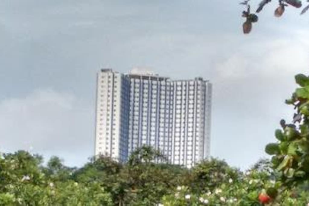 Clean Comfy Awesome Location 2 Condominiums For Rent In Quezon City Metro Manila Philippines
