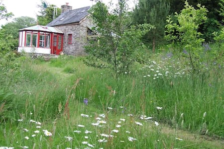 Ty Gwennol - off-grid Eco- cottage - Brecon - Rumah