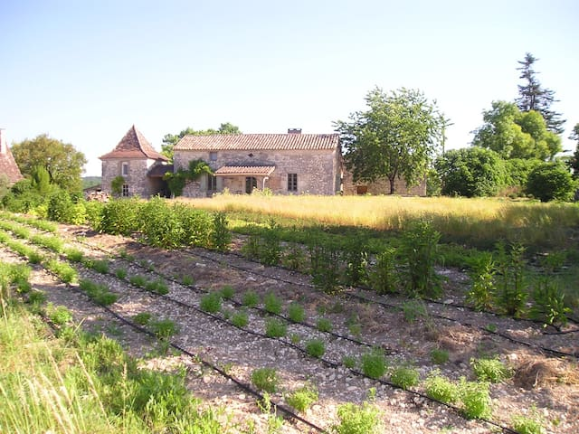 Ancienne ferme en pierre  Dordogne - Issigeac - Casa