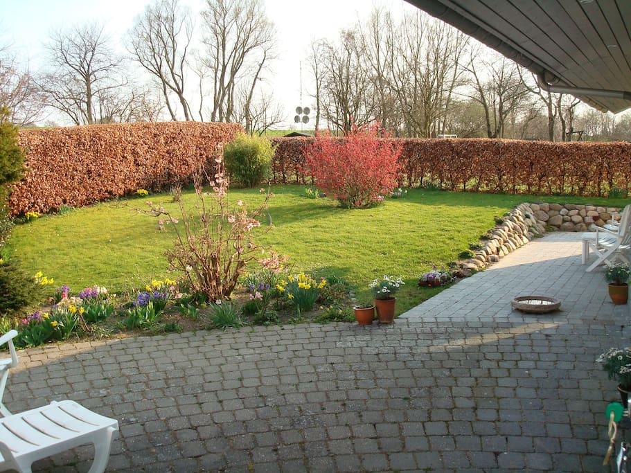 Terrasse og have