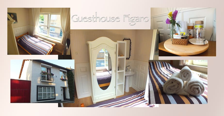 Guesthouse Figaro Single Room - Maastricht - House