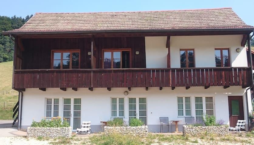 Trekking Hof im Berner Jura / Ferme - Saicourt - Bed & Breakfast