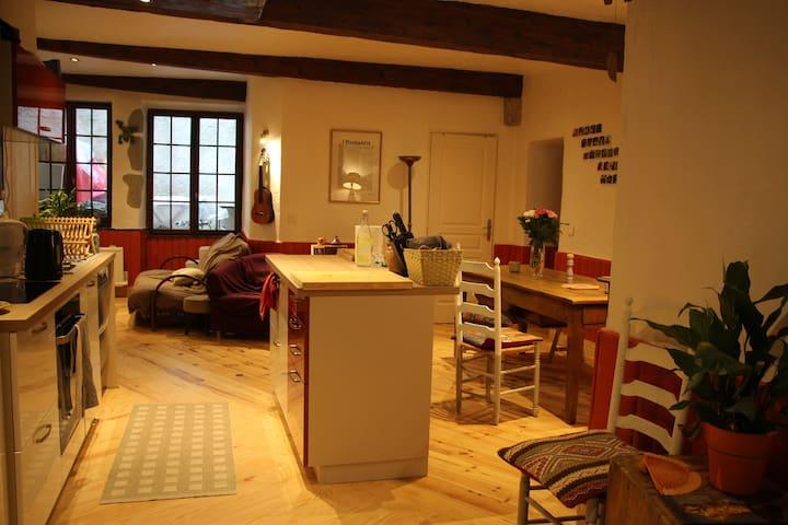 Chambre centre historique/piéton - Chambéry - Apartamento