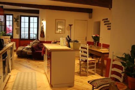 Chambre centre historique/piéton - Chambéry