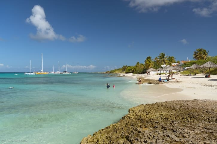 Boca Catalina, great for snorkeling! 3 min. driving from our Aruba Villa