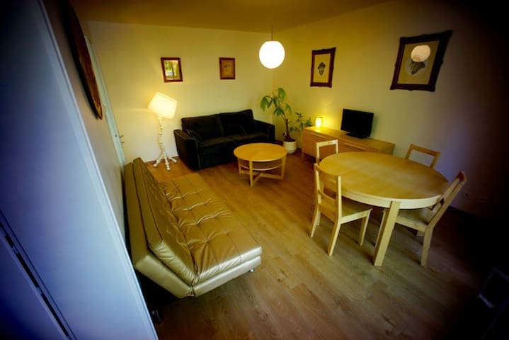 Nice Flat in Strasbourg south next to the tram - Illkirch-Graffenstaden - Apartamento
