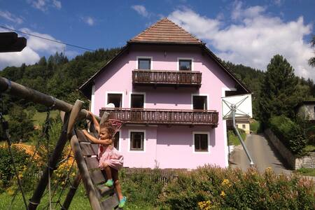 Country house for cosy spacious group holidays - Oberzeiring