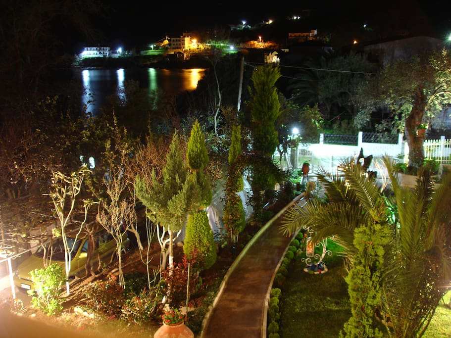 Our garden and lights reflecting on the sea.