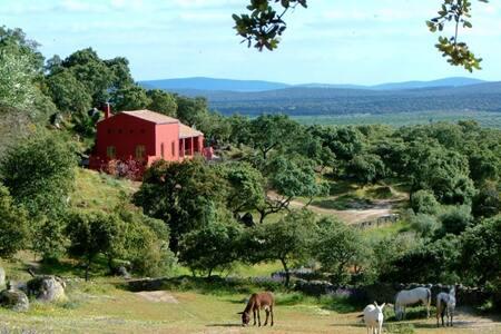 Stunning farmhouse retreat & pool - Montánchez