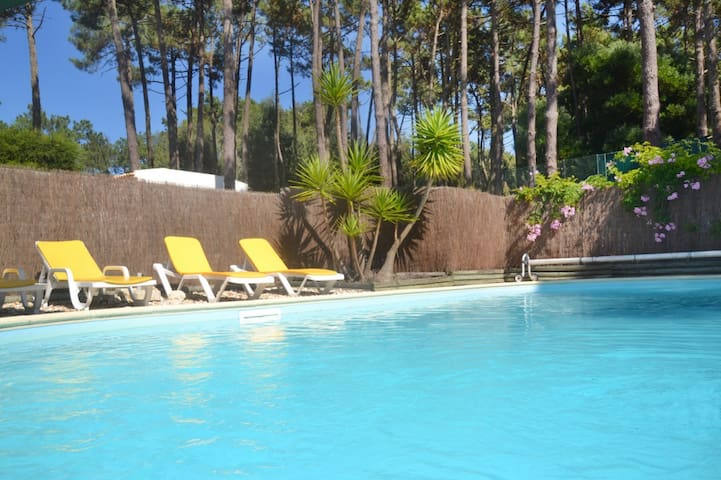 Villa w/ pool, garden. Forest & Sea - Colares - Villa