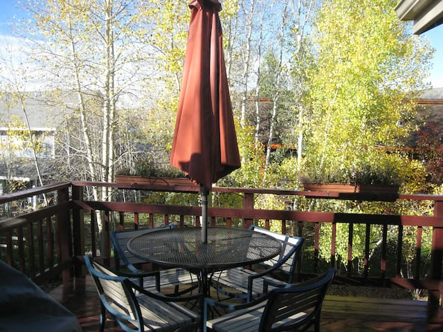 Deck with fantastic views of the Flat Top Mountains.