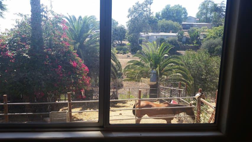 Non-Profit Farm Animal Sanctuary Cottage