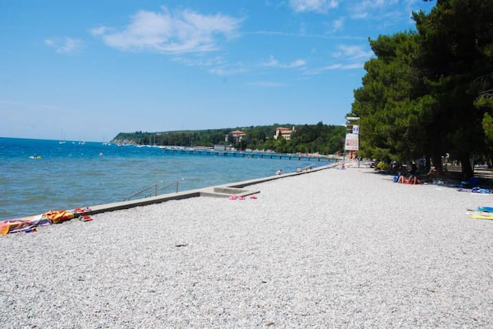 LUCKY APARTMENT  FOR 1 TO 6 PERSONS - Hrvatini - Daire