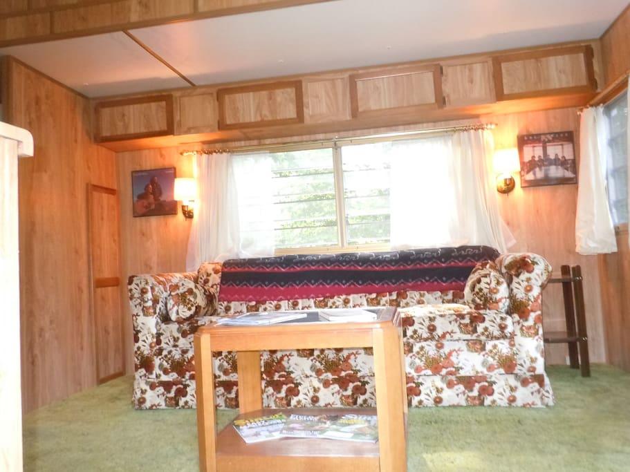 Nice living room / kitchen with sleeper sofa.