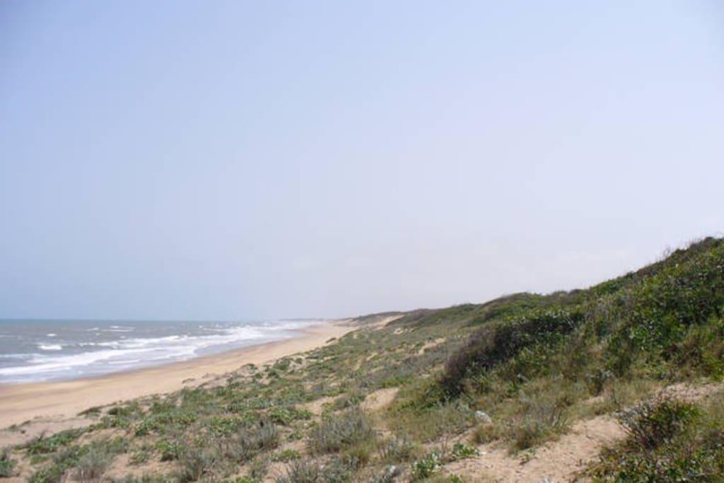 Une grande plage devant la résidence