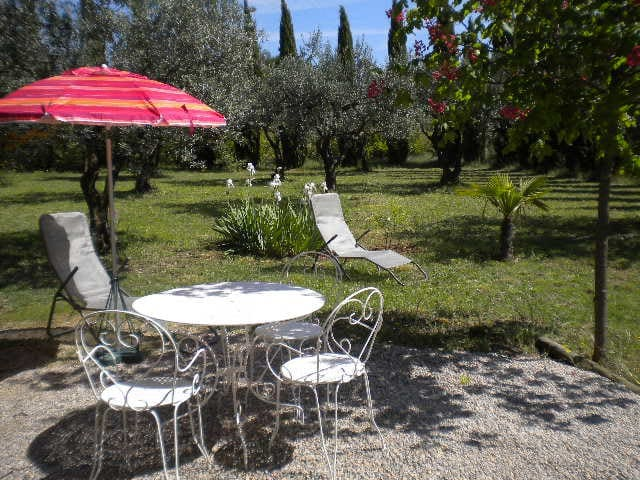 Charming studio among olive trees - Aups - Apartment