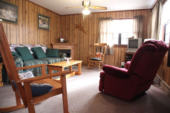 Quiet Cottage in the Mountains - Hendersonville - Hus