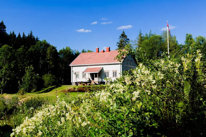 tipical norwegian home for 8 p