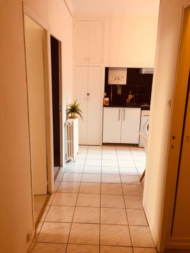 Voici le hall d entrée , cuisine au fond , salle de bain et wc a droite , salon et chambre sur la gauche .