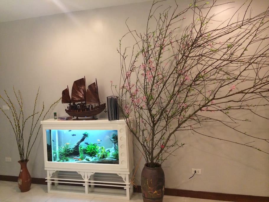 The living room with fish tank
