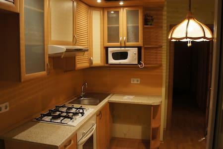 Cozy one bedroom apartment - Yekaterinburg - Apartmen