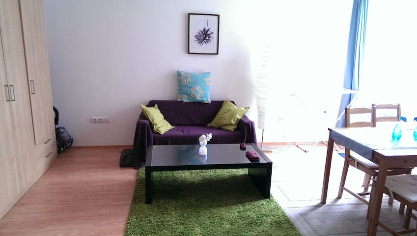 Nice 1-bedroom flat in the downtown - Budapest - Pis