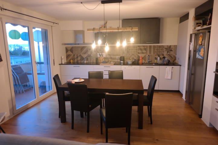 Appartement lumineux, spacieux,entièrement rénové
