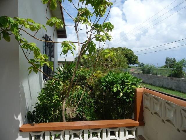 a view of the garden on the porch....also called a verandah