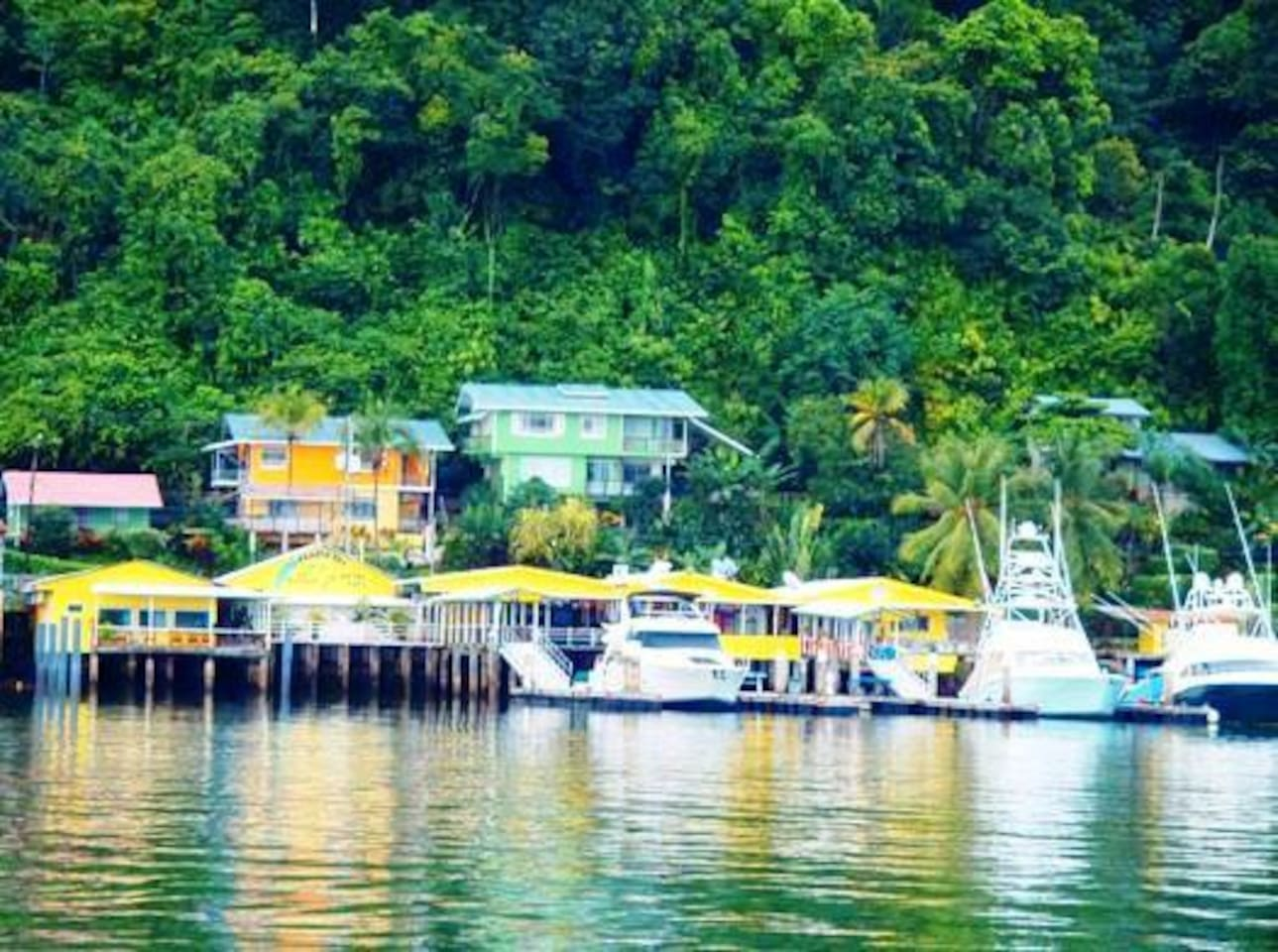Vista Villas from the water - Located on the hillside across from the yellow Banana Bay Marinas waterfront Bar and Restaurant