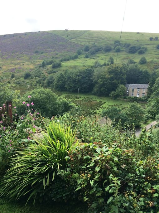 View Across The Valley From The Garden