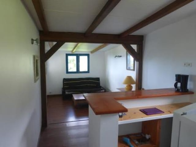 Beautiful appartment with sea and mountain view. - St Claude - Appartement