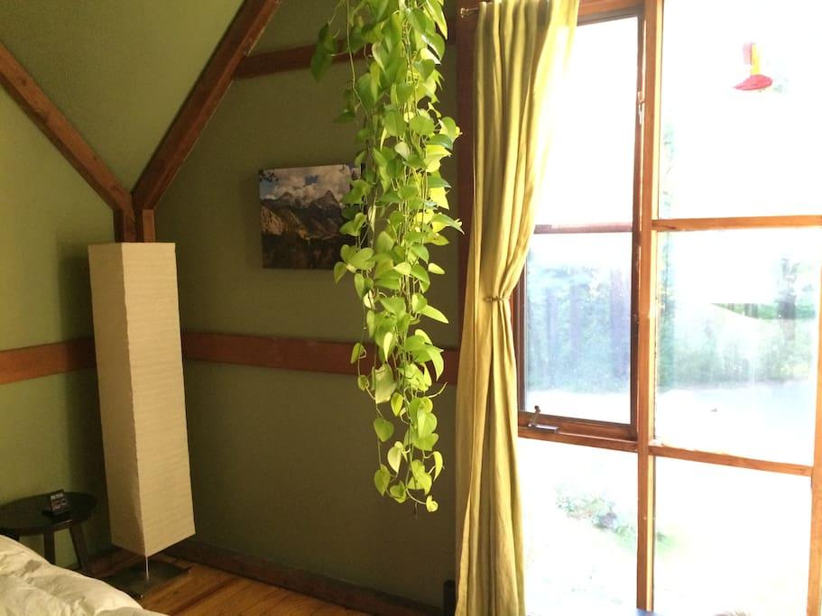 Guest bedroom full length windows
