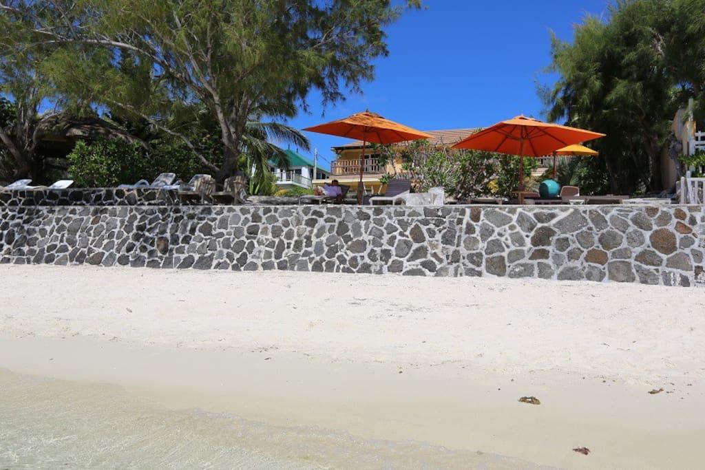 White sandy beach with sunbeds and beach umbrellas